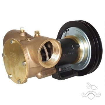 Jabsco Manyetik Kasnaklı Genel Maksat Pompası / 1.1/2 24 V
